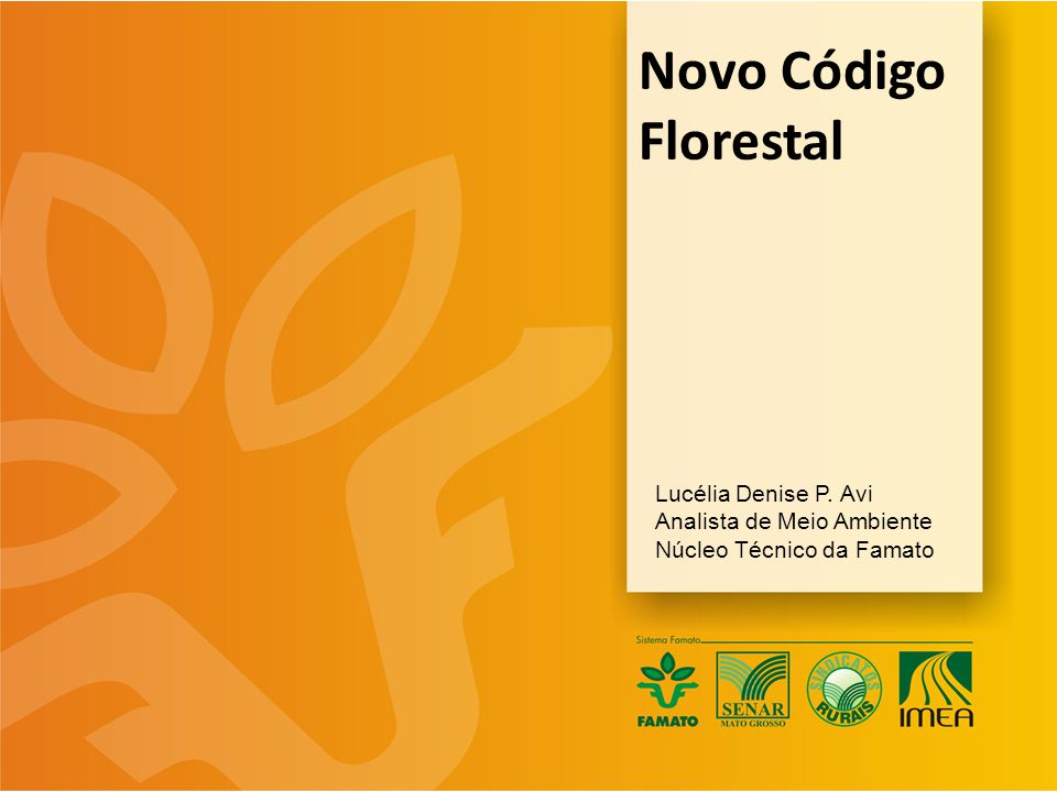 Novo Código Florestal Lucélia Denise P. Avi Analista de Meio Ambiente