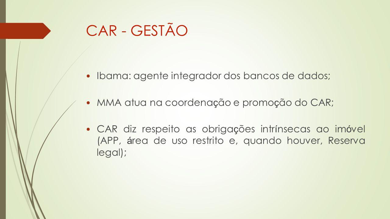 CAR - GESTÃO Ibama: agente integrador dos bancos de dados;
