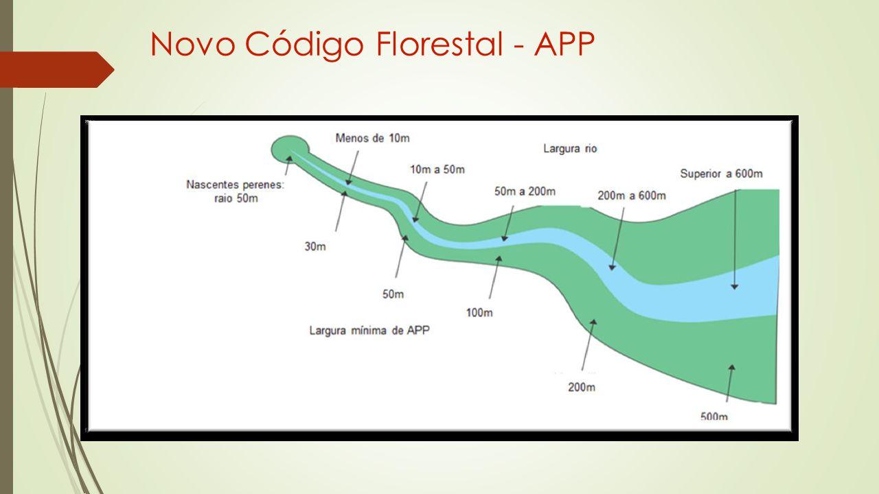 Novo Código Florestal - APP