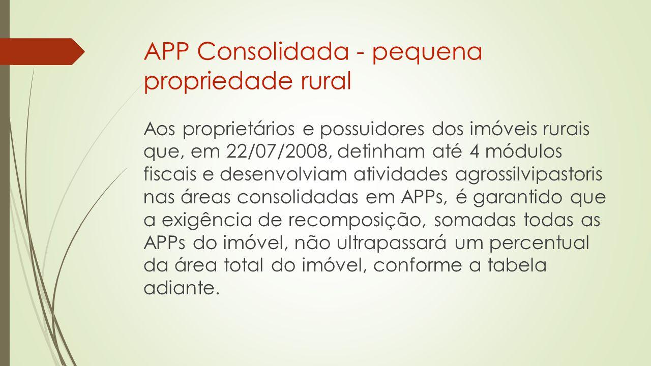 APP Consolidada - pequena propriedade rural