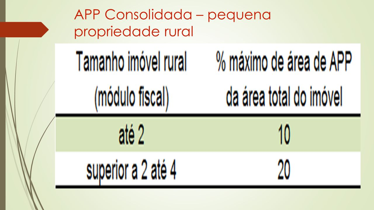 APP Consolidada – pequena propriedade rural