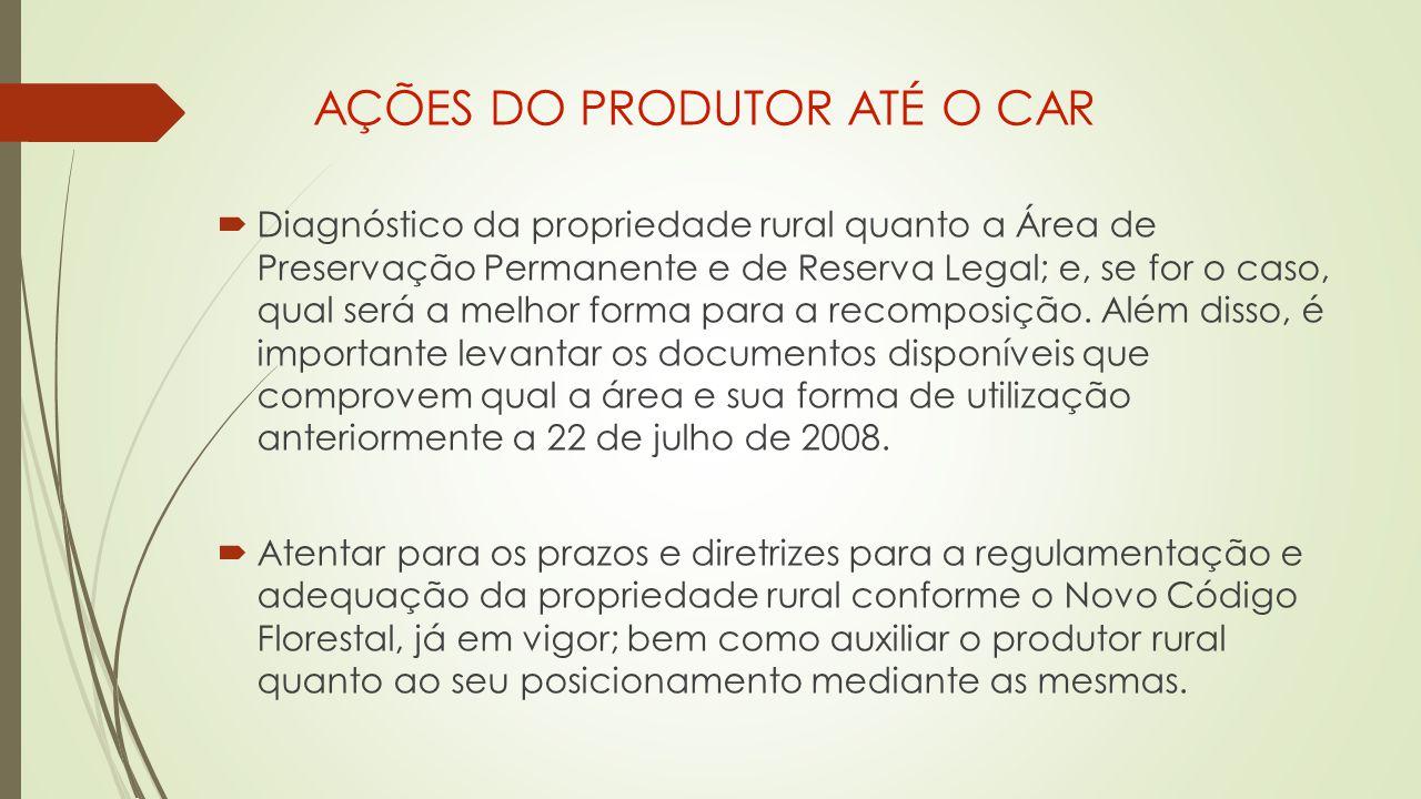 AÇÕES DO PRODUTOR ATÉ O CAR