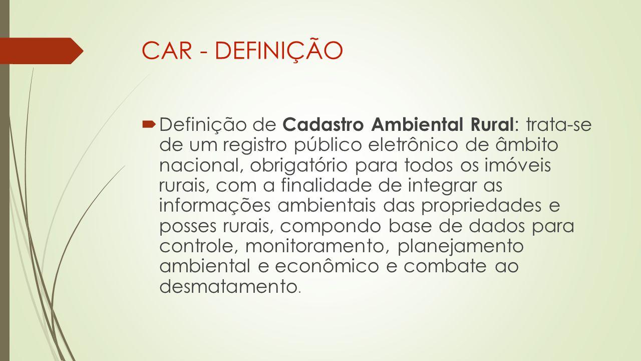 CAR - DEFINIÇÃO