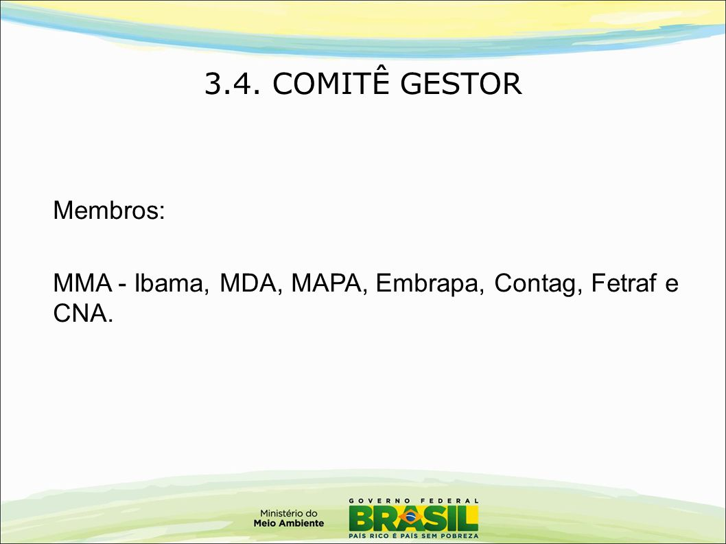 3.4. COMITÊ GESTOR Membros: