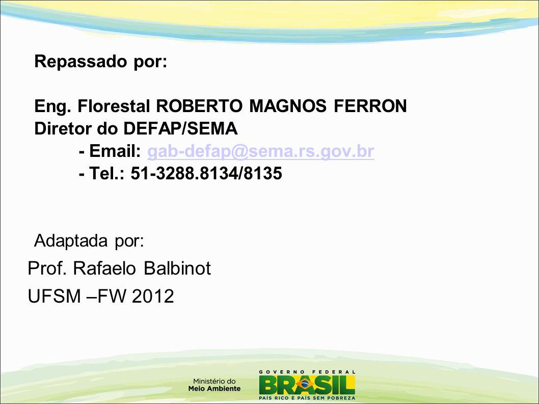 Prof. Rafaelo Balbinot UFSM –FW 2012 Repassado por: