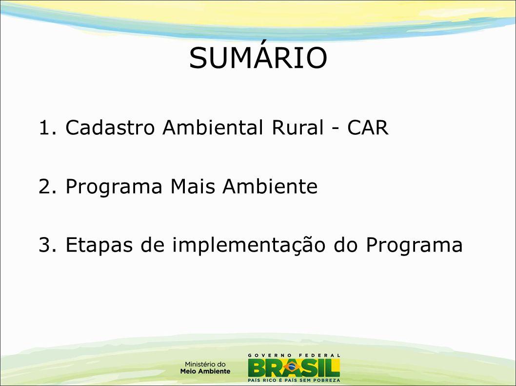 SUMÁRIO 1. Cadastro Ambiental Rural - CAR 2. Programa Mais Ambiente