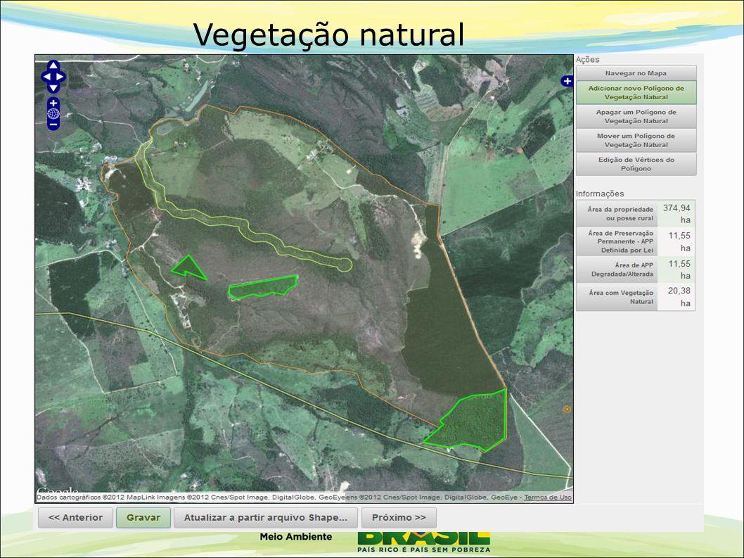Vegetação natural