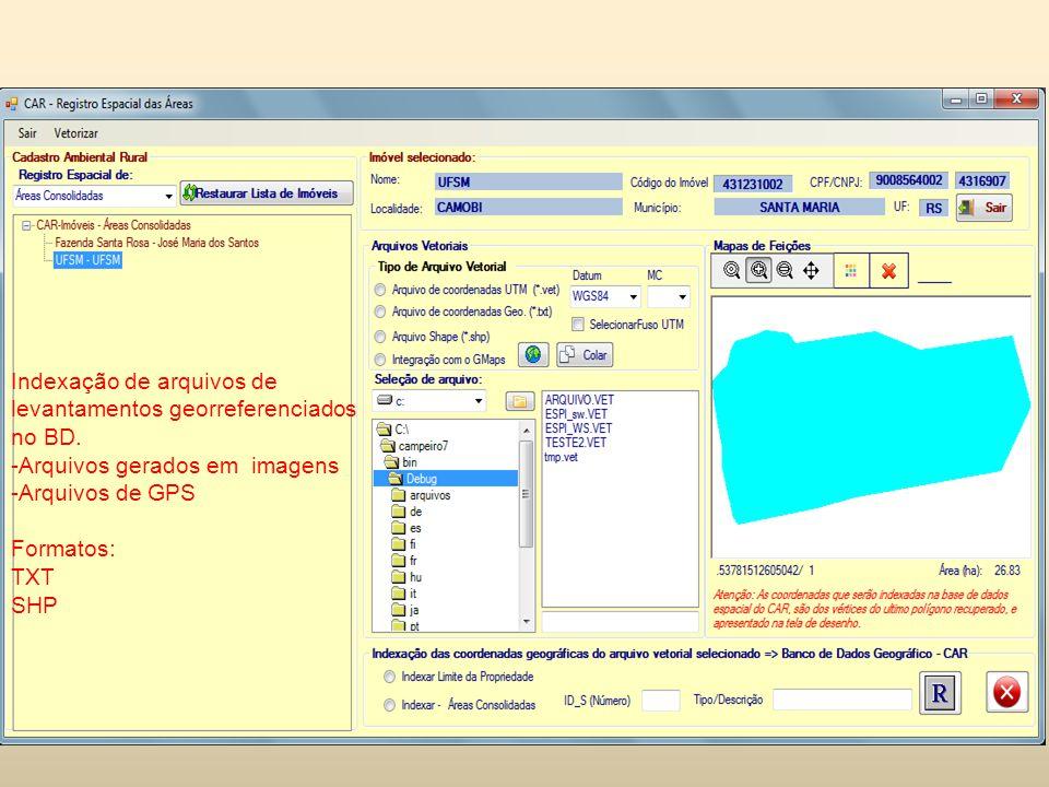 Indexação de arquivos de levantamentos georreferenciados no BD.