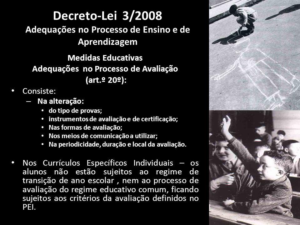 Decreto-Lei 3/2008 Adequações no Processo de Ensino e de Aprendizagem