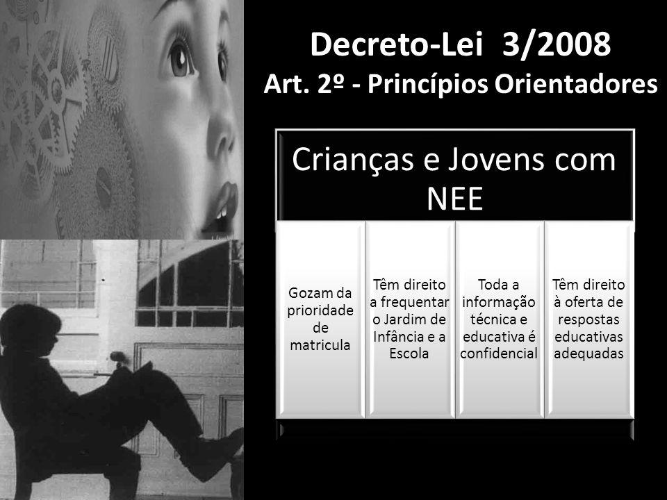 Decreto-Lei 3/2008 Art. 2º - Princípios Orientadores