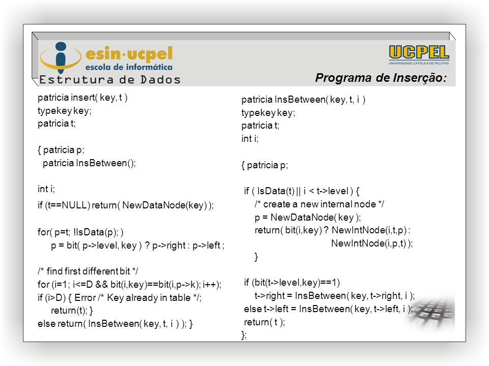 Programa de Inserção: patricia insert( key, t ) typekey key;