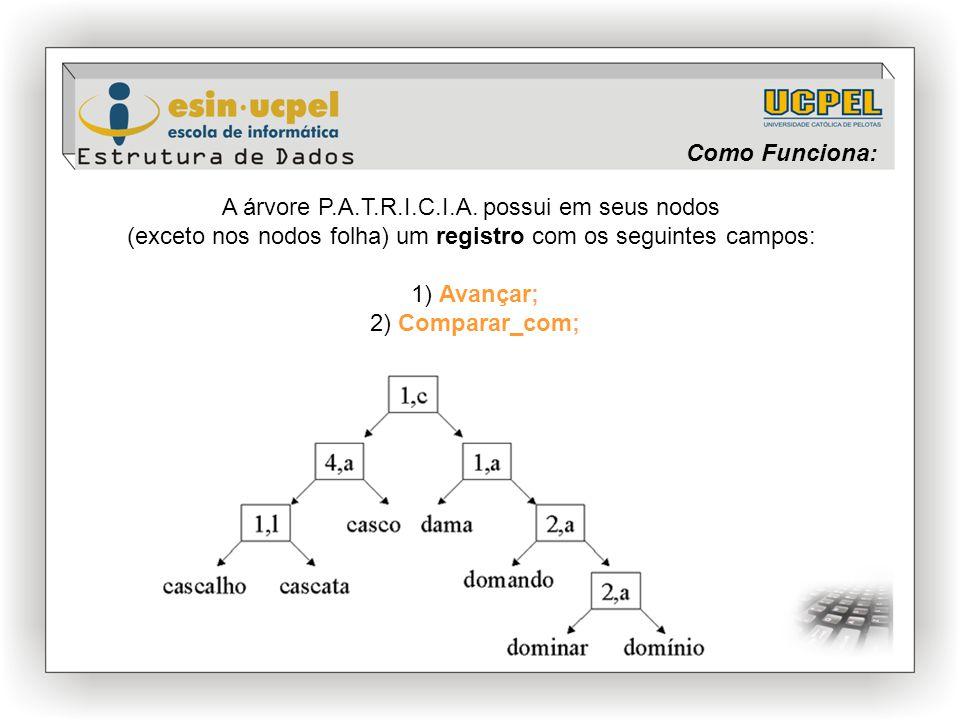 Como Funciona: A árvore P.A.T.R.I.C.I.A. possui em seus nodos (exceto nos nodos folha) um registro com os seguintes campos: