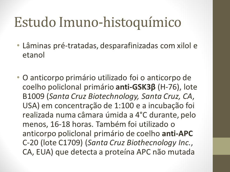 Estudo Imuno-histoquímico