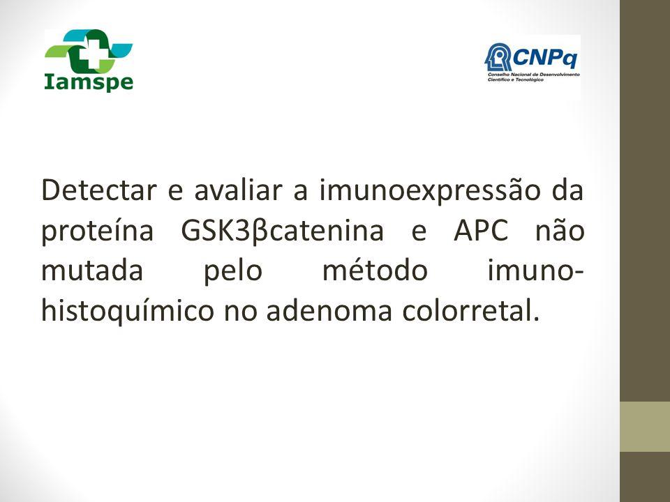 Detectar e avaliar a imunoexpressão da proteína GSK3βcatenina e APC não mutada pelo método imuno-histoquímico no adenoma colorretal.