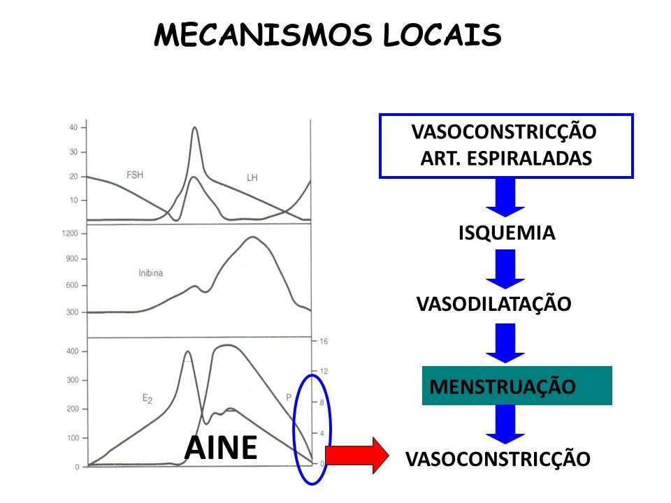 AINE MECANISMOS LOCAIS VASOCONSTRICÇÃO ART. ESPIRALADAS ISQUEMIA