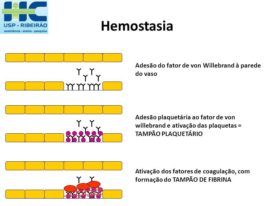 Hemostasia Adesão do fator de von Willebrand à parede do vaso