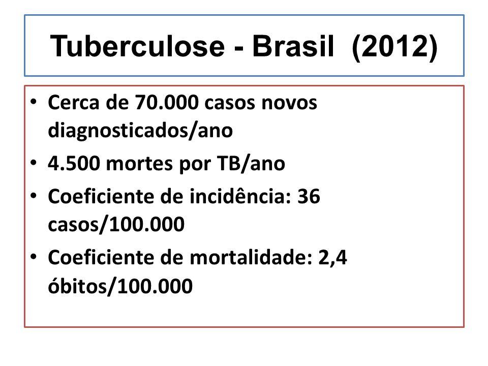 Tuberculose - Brasil (2012)