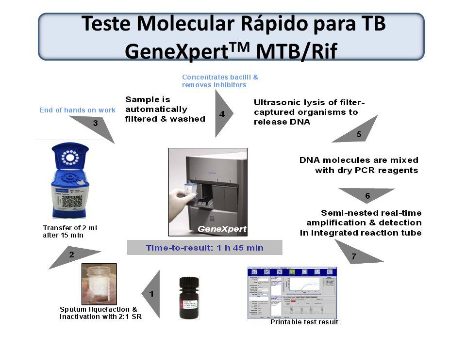 Teste Molecular Rápido para TB GeneXpertTM MTB/Rif