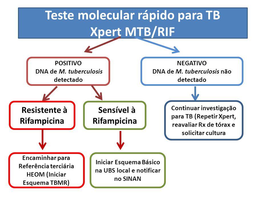 Teste molecular rápido para TB Xpert MTB/RIF