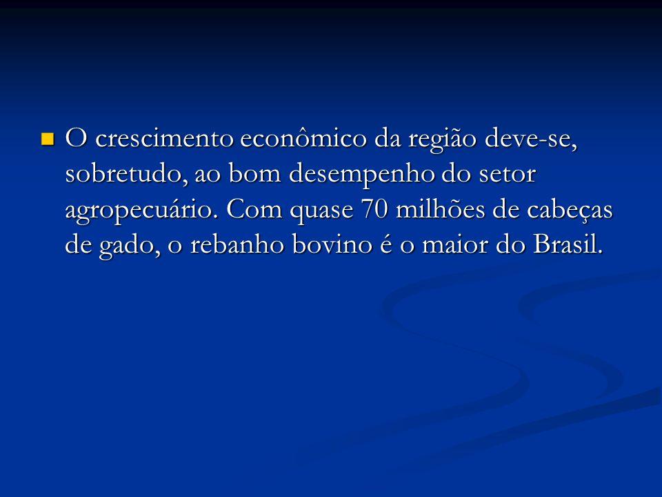 O crescimento econômico da região deve-se, sobretudo, ao bom desempenho do setor agropecuário.