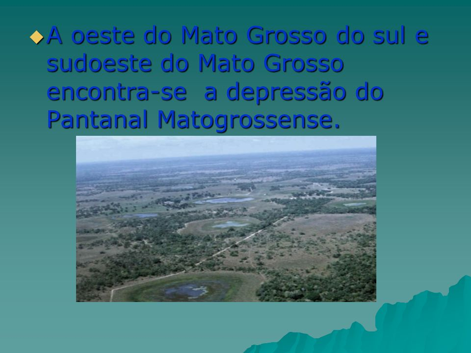A oeste do Mato Grosso do sul e sudoeste do Mato Grosso encontra-se a depressão do Pantanal Matogrossense.