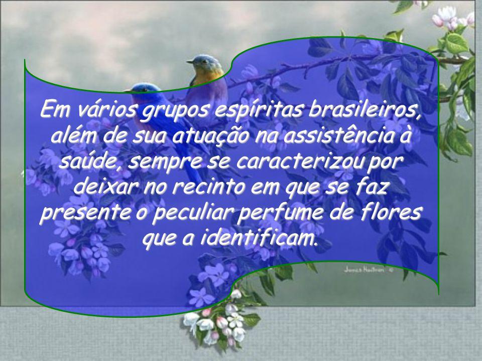 Em vários grupos espíritas brasileiros, além de sua atuação na assistência à saúde, sempre se caracterizou por deixar no recinto em que se faz presente o peculiar perfume de flores que a identificam.