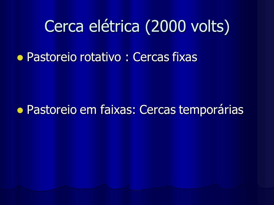 Cerca elétrica (2000 volts)