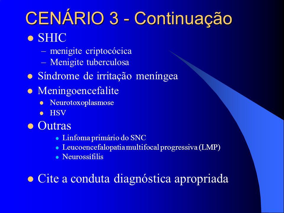 CENÁRIO 3 - Continuação SHIC Outras