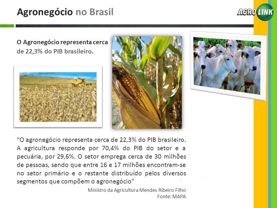 Agronegócio no Brasil O Agronegócio representa cerca