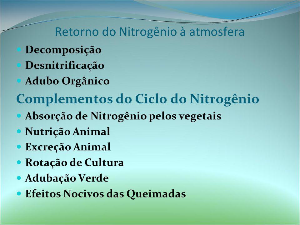 Retorno do Nitrogênio à atmosfera