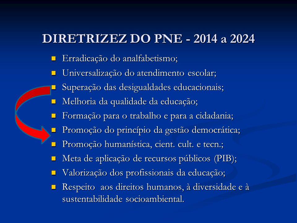 DIRETRIZEZ DO PNE - 2014 a 2024 Erradicação do analfabetismo;