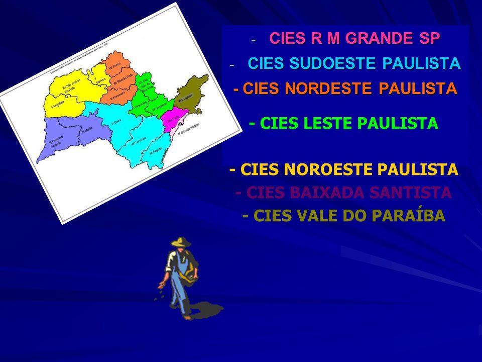 CIES SUDOESTE PAULISTA - CIES NORDESTE PAULISTA
