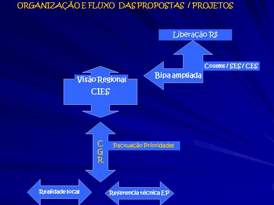 ORGANIZAÇÃO E FLUXO DAS PROPOSTAS / PROJETOS Pactuação Prioridades
