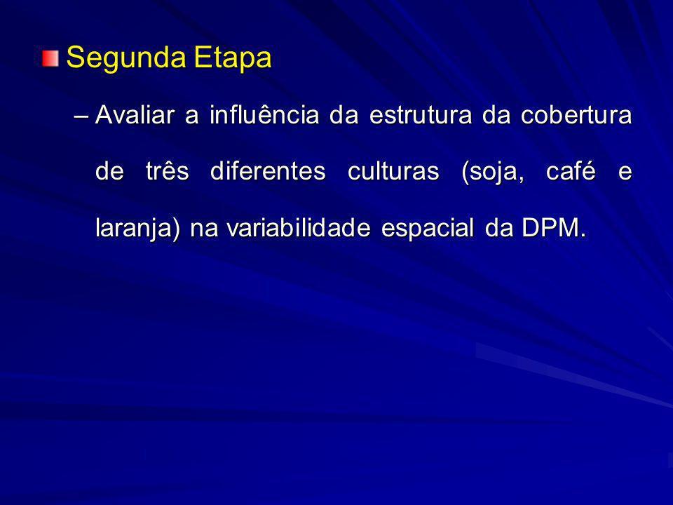Segunda Etapa Avaliar a influência da estrutura da cobertura de três diferentes culturas (soja, café e laranja) na variabilidade espacial da DPM.