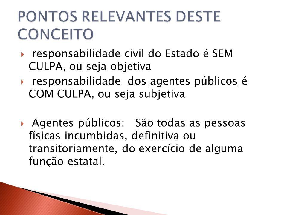 PONTOS RELEVANTES DESTE CONCEITO