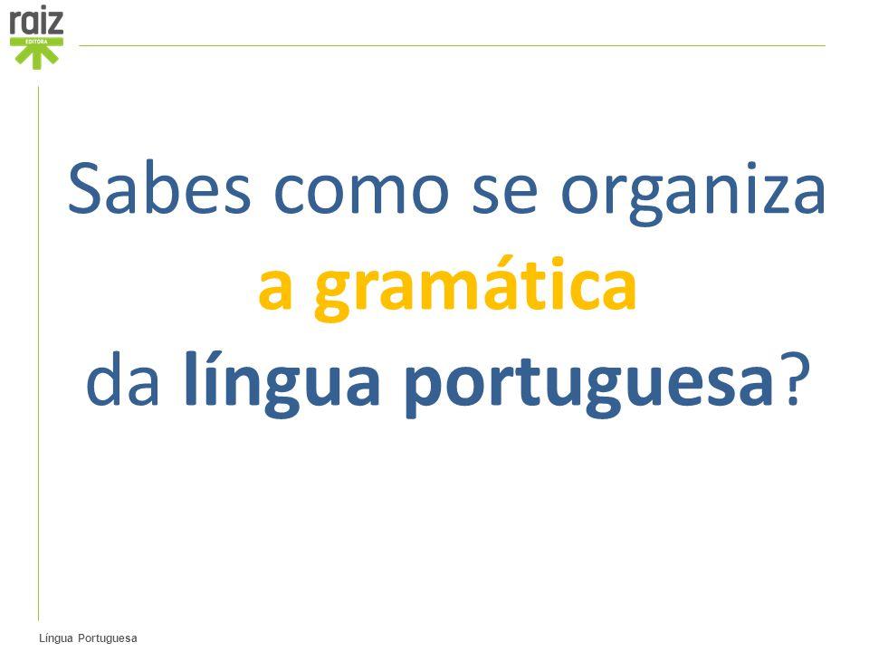 Sabes como se organiza a gramática