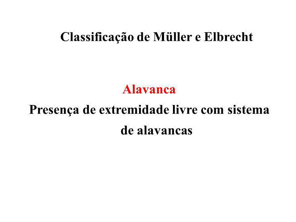 Classificação de Müller e Elbrecht