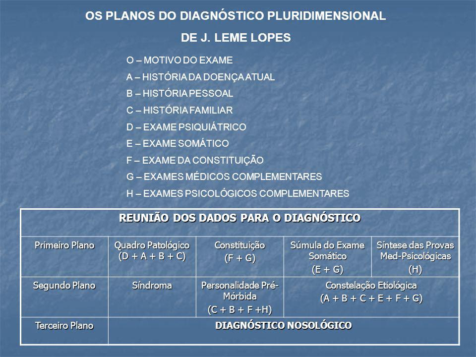 OS PLANOS DO DIAGNÓSTICO PLURIDIMENSIONAL DE J. LEME LOPES