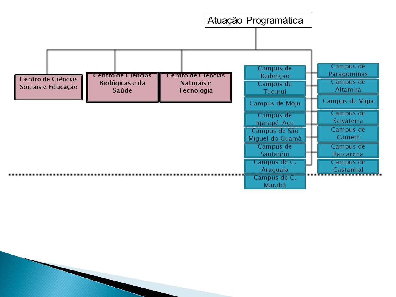 Atuação Programática Campus de Paragominas Campus de Redenção