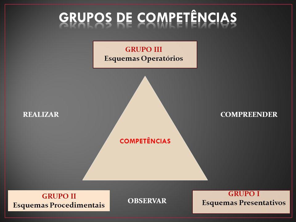 GRUPOS DE COMPETÊNCIAS Esquemas Procedimentais