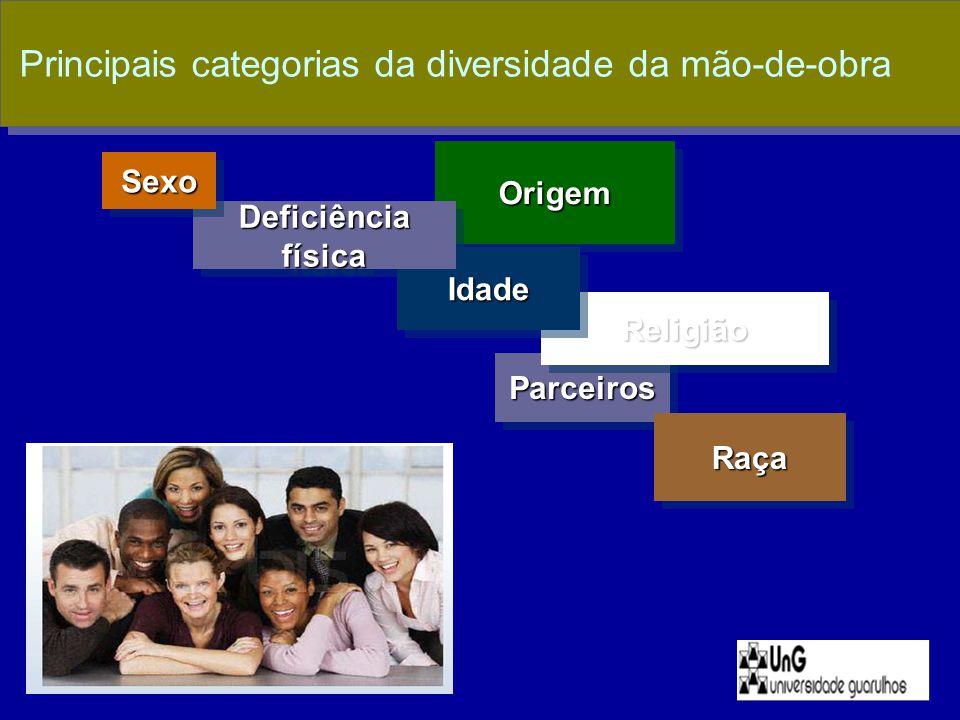 Principais categorias da diversidade da mão-de-obra