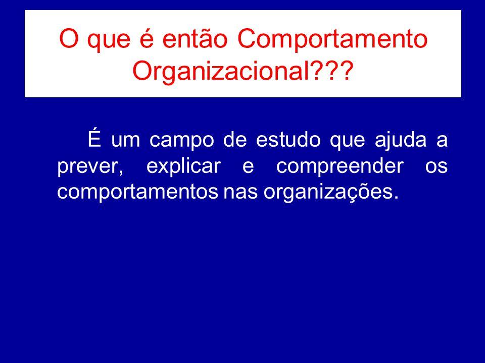 O que é então Comportamento Organizacional