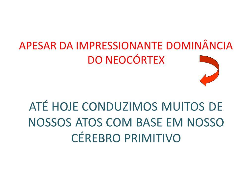 APESAR DA IMPRESSIONANTE DOMINÂNCIA DO NEOCÓRTEX ATÉ HOJE CONDUZIMOS MUITOS DE NOSSOS ATOS COM BASE EM NOSSO CÉREBRO PRIMITIVO