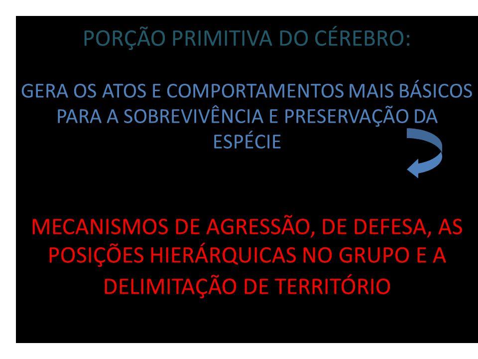 PORÇÃO PRIMITIVA DO CÉREBRO: GERA OS ATOS E COMPORTAMENTOS MAIS BÁSICOS PARA A SOBREVIVÊNCIA E PRESERVAÇÃO DA ESPÉCIE MECANISMOS DE AGRESSÃO, DE DEFESA, AS POSIÇÕES HIERÁRQUICAS NO GRUPO E A DELIMITAÇÃO DE TERRITÓRIO