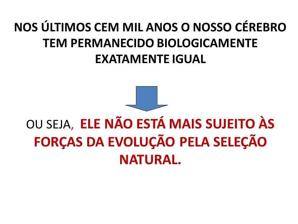 NOS ÚLTIMOS CEM MIL ANOS O NOSSO CÉREBRO TEM PERMANECIDO BIOLOGICAMENTE EXATAMENTE IGUAL OU SEJA, ELE NÃO ESTÁ MAIS SUJEITO ÀS FORÇAS DA EVOLUÇÃO PELA SELEÇÃO NATURAL.