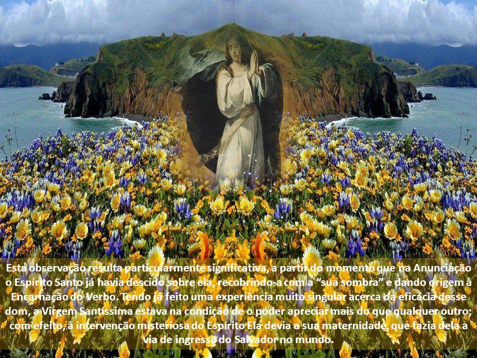 Esta observação resulta particularmente significativa, a partir do momento que na Anunciação o Espírito Santo já havia descido sobre ela, recobrindo-a com a sua sombra e dando origem à Encarnação do Verbo.
