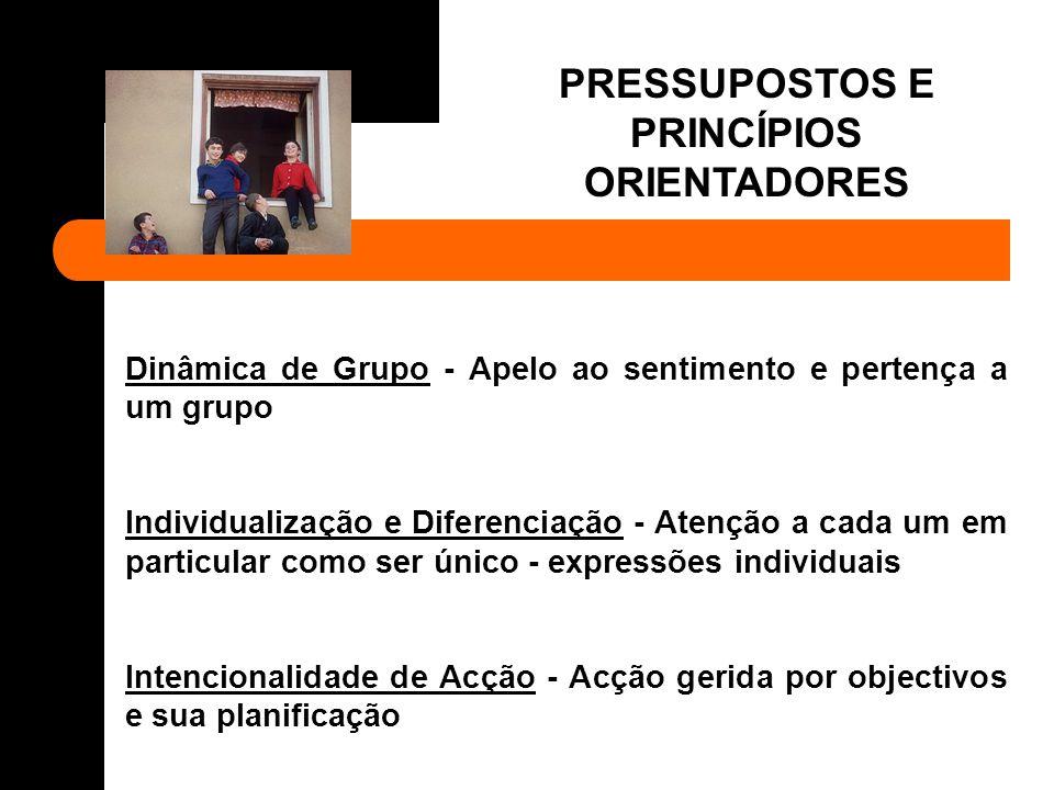 PRESSUPOSTOS E PRINCÍPIOS ORIENTADORES