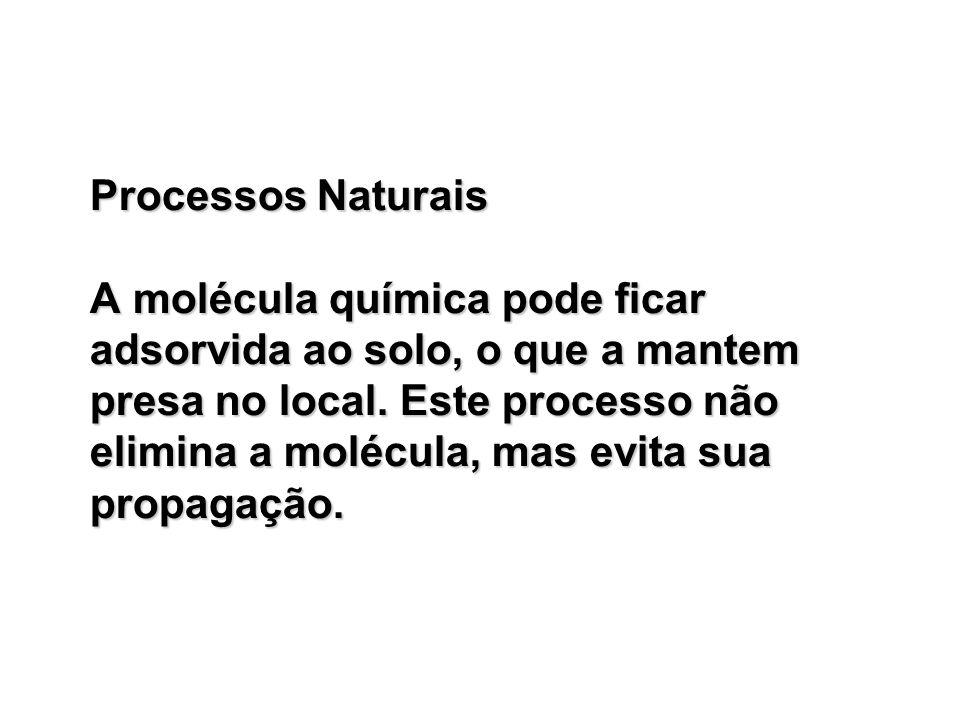 Processos Naturais A molécula química pode ficar adsorvida ao solo, o que a mantem presa no local.