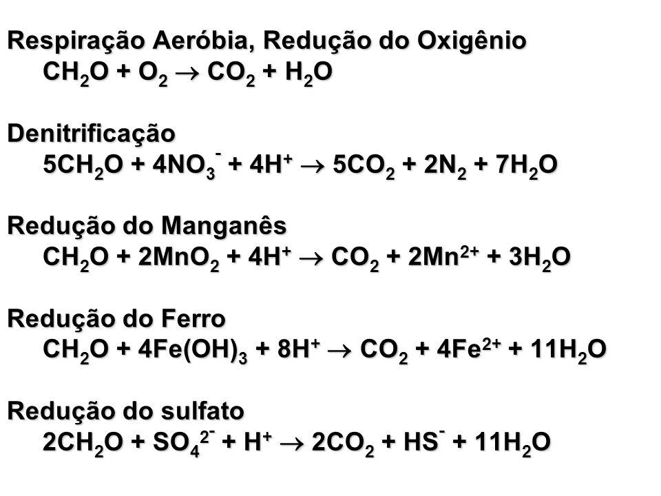 Respiração Aeróbia, Redução do Oxigênio CH2O + O2  CO2 + H2O Denitrificação 5CH2O + 4NO3ˉ + 4H+  5CO2 + 2N2 + 7H2O Redução do Manganês CH2O + 2MnO2 + 4H+  CO2 + 2Mn2+ + 3H2O Redução do Ferro CH2O + 4Fe(OH)3 + 8H+  CO2 + 4Fe2+ + 11H2O Redução do sulfato 2CH2O + SO42ˉ + H+  2CO2 + HSˉ + 11H2O