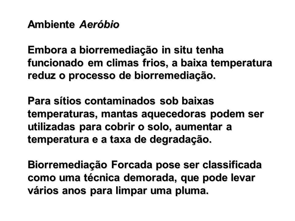 Ambiente Aeróbio Embora a biorremediação in situ tenha funcionado em climas frios, a baixa temperatura reduz o processo de biorremediação.
